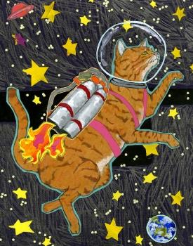 11x 14 Astro Cat LP3 (LP3)