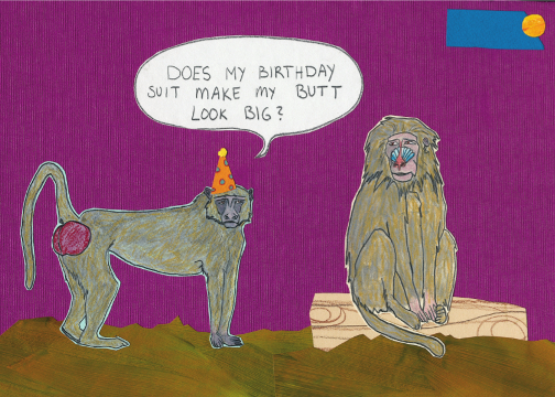 Baboon Birthday C102 (C102) Greeting inside: Happy Birthday!