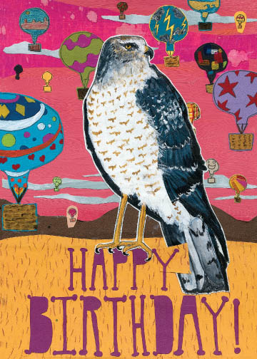 Birthday Hawk C14 (C14) Greeting inside: Blank inside
