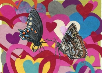 Hearts & Butterflies S16 (S16)