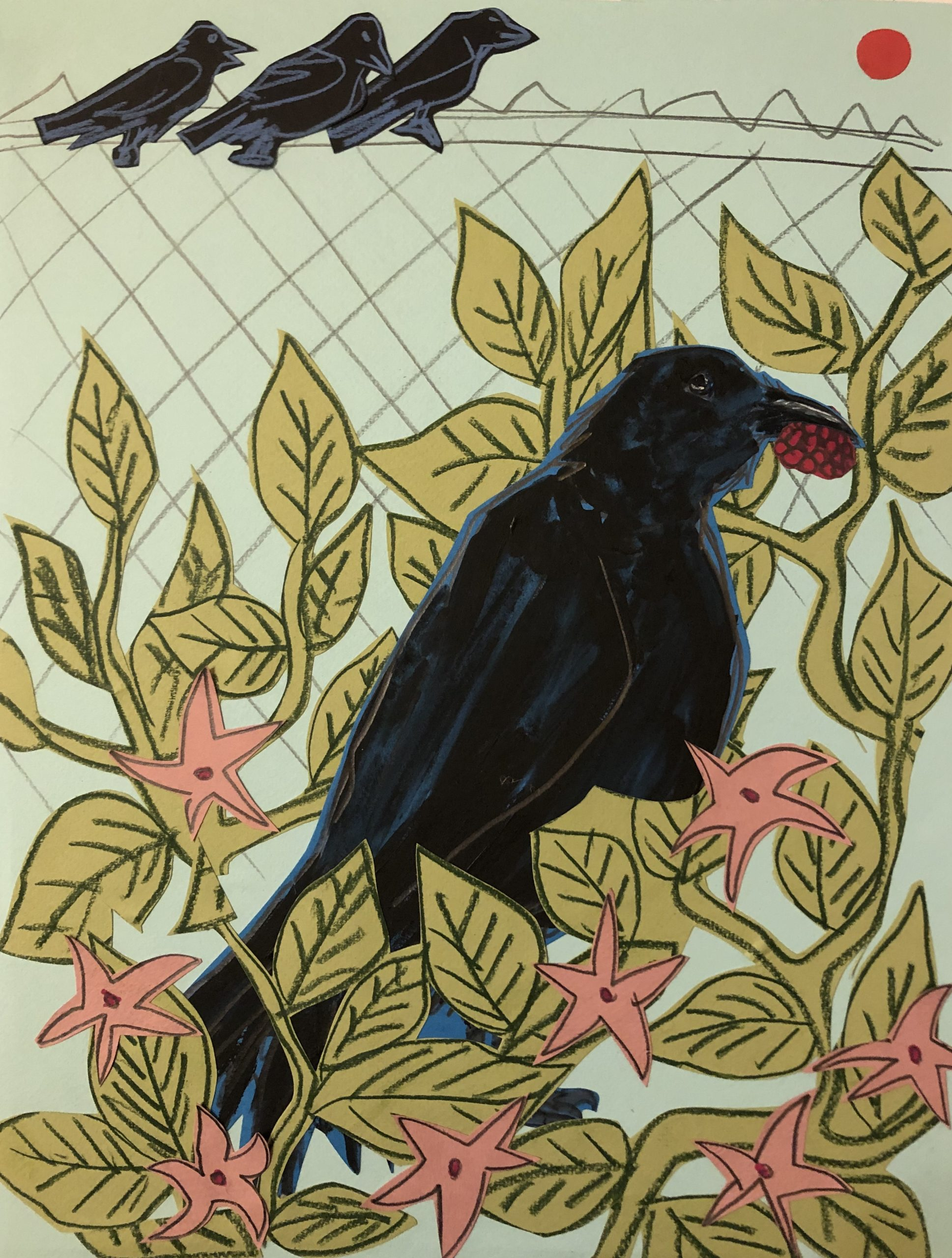 Sunde White illustrates her essay about a crow that like raspberries